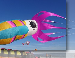 Giant 30ft Squid by Cobra Kites